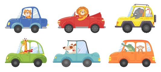 Cute animals in funny cars. Animal driver, pets vehicle and happy lion in car kid vector cartoon illustration set
