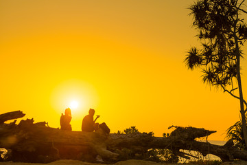 Silhouettes of romantic couple sitting on tree trunk at tropical beach at sunset