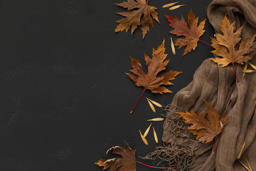 Brown scarf with autumn fallen leaves on black background Wall mural