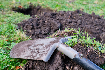 Close-up shovel digs hole in meadow