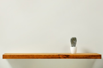 Fototapete - Shelf background of wood and free space for your decoration. Small single plant and gray wall.