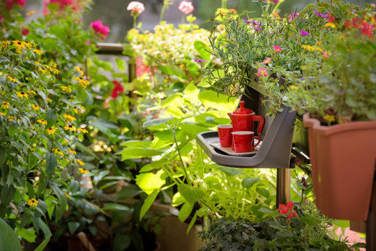 Urban Balcony garden. Cozy summer balcony with many potted plants, cup of coffee. Morning coffee on the balcony. Small table with red coffee cups and coffee maker.
