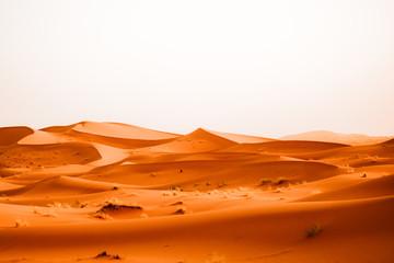 Foto auf Leinwand Ziegel Sahara desert