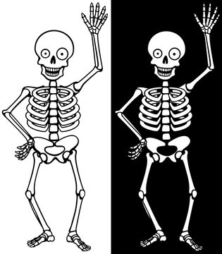 Vector illustration of a happy, waving cartoon skeleton, against a white and a black background.