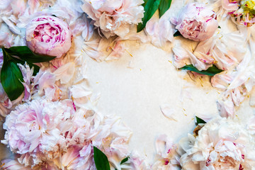 Wall Murals Floral Frame made of pink peony flowers