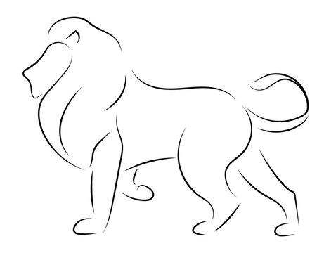 Black line lion on white background