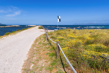 Scenery of Majorca coast near Playa de Muro beach. Alcudia, Mallorca, Spain