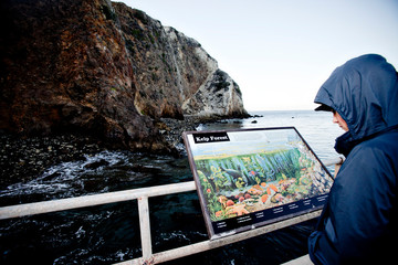 One child reading information about kelp forest while sailing the Channel Islands near Santa Barbara, California.