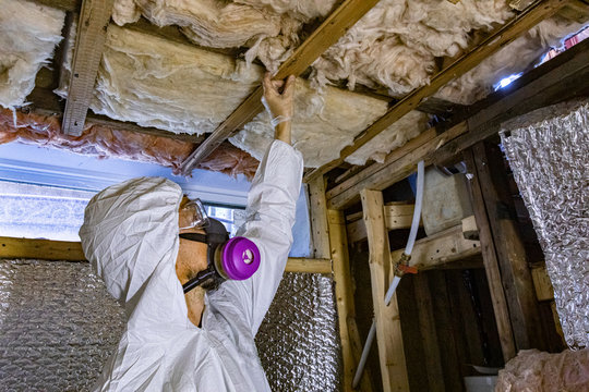 Indoor damp & air quality (IAQ) testing. An environmental quality assessor is seen at work in a basement, checking timber floor joists for signs of rot, mold, mildew and structural defects.