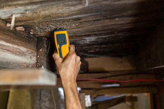 Indoor damp & air quality (IAQ) testing. An environmental home inspector is viewed close-up at work, using an electronic moisture meter to detect signs of damp and rot in wooden structural elements.
