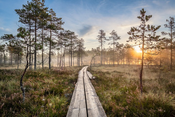 Scenic view from swamp with wooden path and beuatiful sunrise at autumn morning in Finland