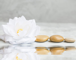 Spa still life with water lily and massage stones