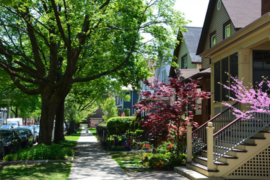 Spring has arrived in a residential neighborhood of Chicago