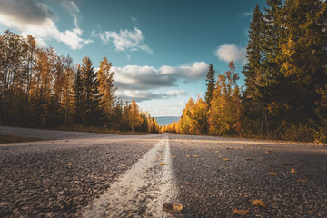 Spoed Foto op Canvas Herfst Autumn road view from Sotkamo, Finland.