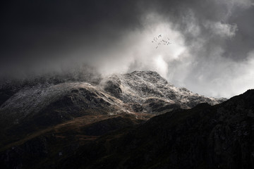 Stunning moody dramatic Winter landscape image of snowcapped Tryfan mountain in Snowdonia with stormy weather brooding overhead with birds flying high above