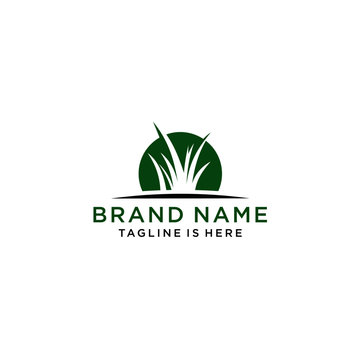 Grass logo design template