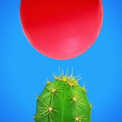 Cactus And Ballon A Dangerous Thing - Environment, Health