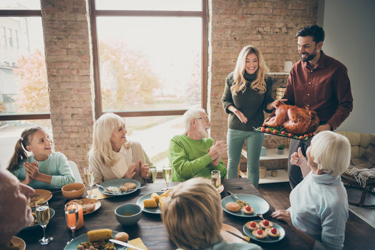 Wonderful housewife. Photo of full family sit feast dishes table meet big roasted turkey ovations clap arms multi-generation relatives event in living room indoors