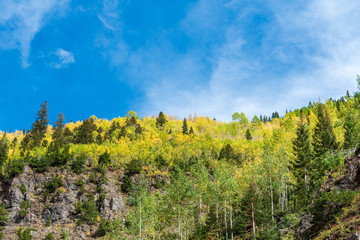 Low angle landscape of mountain top covered in changing aspen trees along the Million Dollar Highway in Colorado