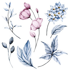 Watercolor pink flowers and blue leaves set. Floral illustration isolated on white background. Hand drawing. Clip art perfectly for wedding, birthday, party and other greetings design.