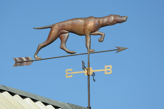 weather vane dog on the roof of the house. Against the blue sky.