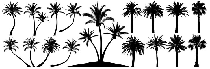 Fotorollo Weiß Palm trees silhouette. Coconut tree date palm. Vector set tropical trees