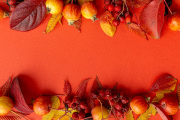 Wall Murals Red Fall background. Fall leaves frame on a red background