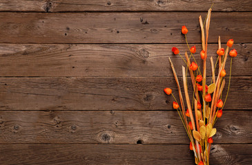 Wall Mural - Autumn Chinese lantern branch and leaves in a bunch. Top view against a rustic wood background with copy space.