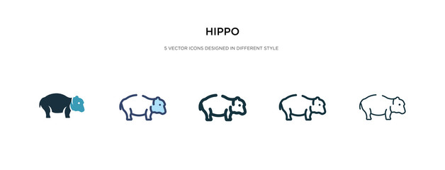 hippo icon in different style vector illustration. two colored and black hippo vector icons designed in filled, outline, line and stroke style can be used for web, mobile, ui