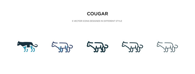cougar icon in different style vector illustration. two colored and black cougar vector icons designed in filled, outline, line and stroke style can be used for web, mobile, ui
