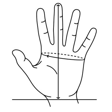 Measuring hand size for gloves