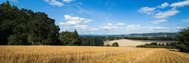 A yellow wheat field with a view onto a agricultural valley below. Wall mural