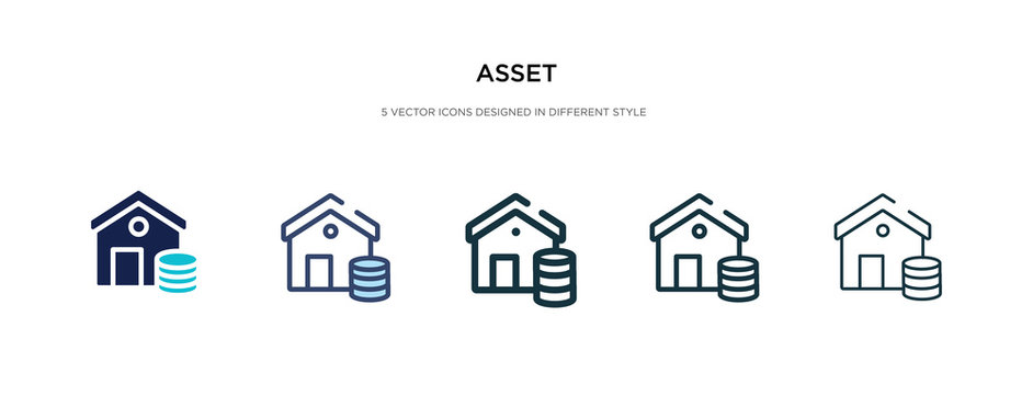 asset icon in different style vector illustration. two colored and black asset vector icons designed in filled, outline, line and stroke style can be used for web, mobile, ui