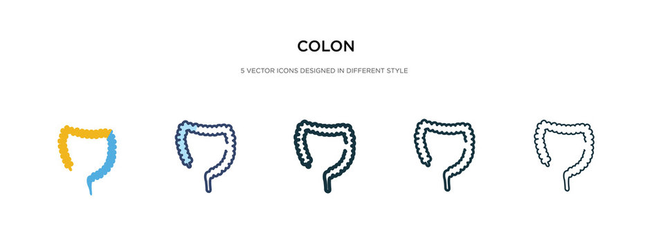 colon icon in different style vector illustration. two colored and black colon vector icons designed in filled, outline, line and stroke style can be used for web, mobile, ui