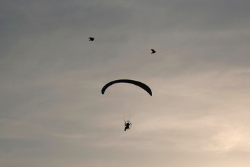 Indonesian Air Force paratroopers fly during celebrations for the 74th Indonesian National Armed Forces day at Halim Perdanakusuma airbase in Jakarta