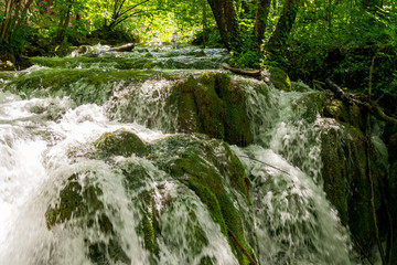 Rushing water cascades down the overgrown natural barriers deep in the dense forest of the Plitvice Lakes National Park, Croatia Wall mural