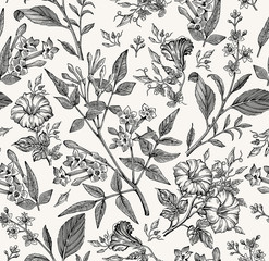 Seamless pattern. Beautiful fabric blooming realistic isolated flowers. Vintage background. Set Jasmine Petunia Croton wildflowers. Wallpaper baroque. Drawing engraving. Vector victorian illustration