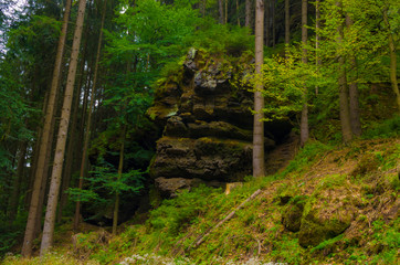 Valley Kyjov (Kyjovské údolí) - Bohemian Switzerland National Park