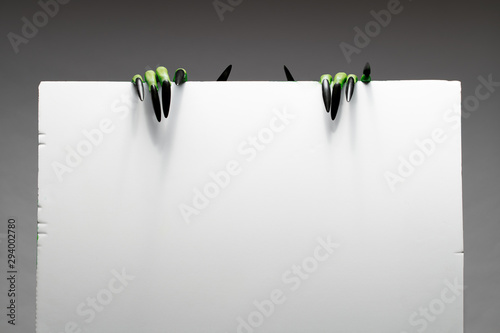 Two green zombie hands with long nails holds empty sheet of paper on gray background in studio