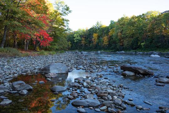 Foliage season on the Carrabassett River in western Maine.