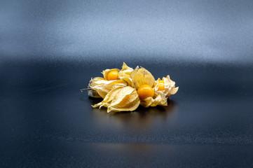 physalis (physalis, golden, gooseberry) isolated on black background