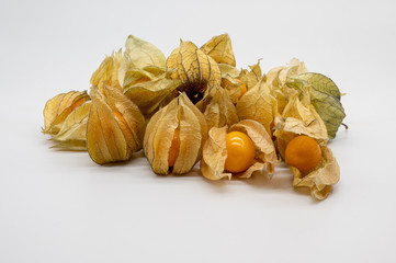 physalis (physalis, golden, gooseberry) isolated on white background