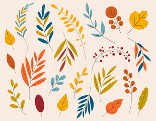 Hand drawn Autumn wild forest hand vector set. Yellow autumnal garden leaf, red fall leaf and fallen dry leaves.