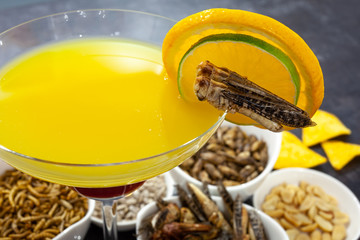 Drink decorated with ready to eat insect