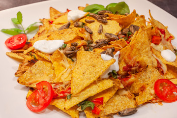 Insect nachos plate