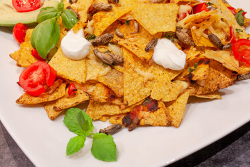 Insect nachos