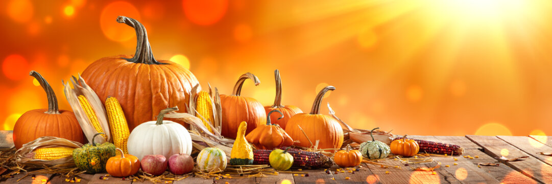 Wooden Harvest Table With Pumpkins Corncobs Gourds And Apples With Orange Bokeh And Sunlight Background