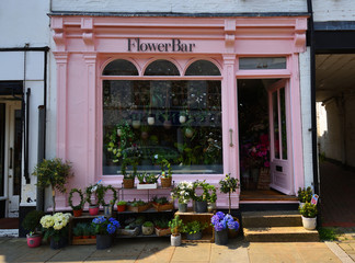 Florist Shop Front Pink Facade and Flowers Display.