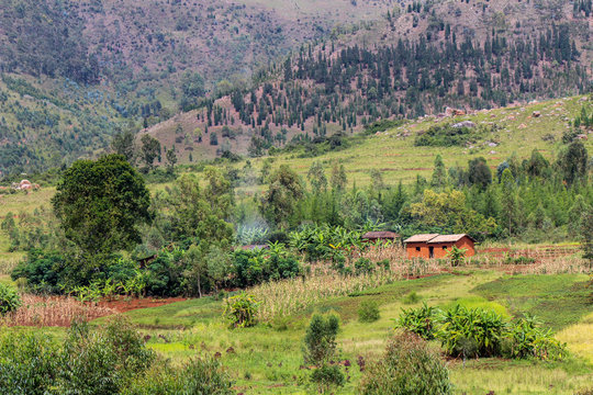 Typical subsistence farmer household in the Gitega Province of Burundi with terraces and eroding hilltops in the background