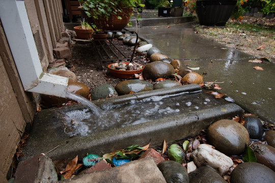 A downspout on a house, water pouring onto a concrete splash block, and over a sidewalk path during heavy rain